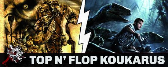 TOPFLP kouka